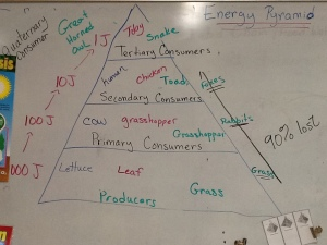 energy_pyramid1